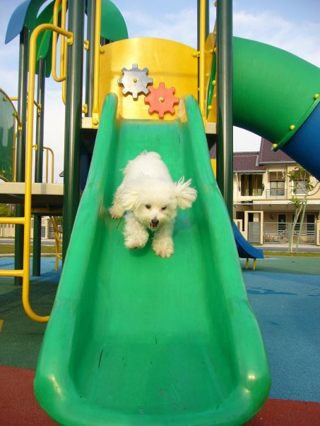 He loves the playground and outdoors!