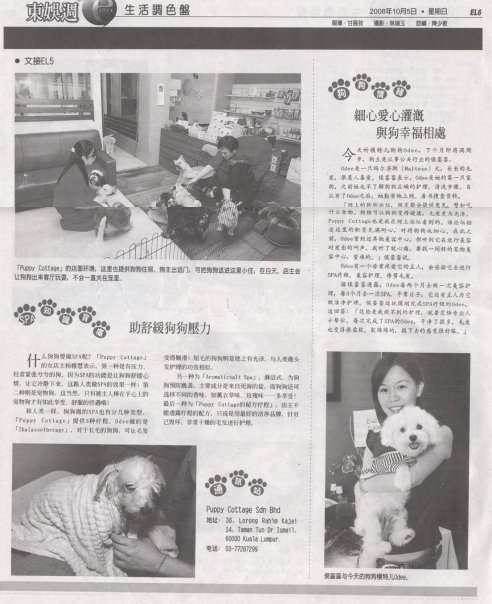 We were featured in Oriental Daily before