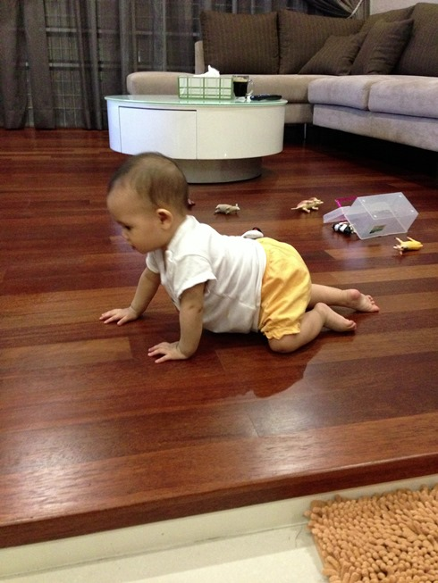 First official crawl on all fours
